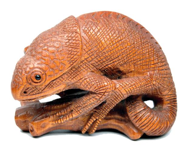 Рептилии меняющие цвет